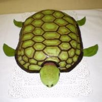 Sea Turtle My first sculpted cake. Sea Turtle in MMF, chocolate cake.