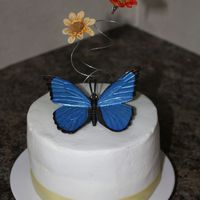 Simple Butterfly   For my neices 3rd birthday. Iced in buttercream - artificial butterfly and flowers.