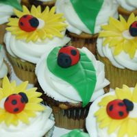 Lady Bug Cupcakes These were for some friends' daughter who LOVES ladybugs!!! Leaves, flowers, & ladybugs are out of fondant/ gumpaste. Cupcakes are...