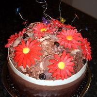 Chocolate Birthday Cake tri chocolate collars, white, milk and dark. Chocolate cake inside with white chocolate and cherry ripe filling. Made my first Sugarpaste...