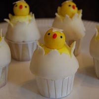 Hatched Chick made these cupcakes for DD's preschool easter party. Also made bunny ones but the kids liked these more.