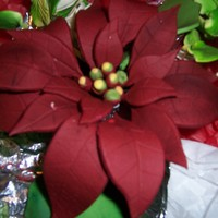 Poinsttia's  Poinsettia Gumpaste made with free form leaves. These were dusted with a brick color and then steamed to set color. Made for a wedding cake...