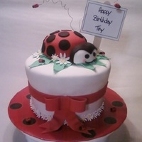 Ladybug Cake All decor made with Satin Ice.. Got the inspiration for the ladybug from a user here on CC!
