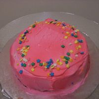 Smash Cake Chocolate cake with raspberry whipped cream. Spray on pink color