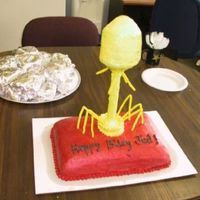 Phage Cake this was for my boss' 50th birthday. he is a microbiologist so i thought a virus infecting a bacterium would be apt. i didnt have time...