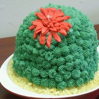 Cactus Cake I copied Collete Peters cake but got too tired before I put on all those needles.Chocolate cake leftovers from the pig cake, chocolate...