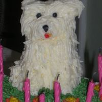 Westie Birthday Cake 2008 Base cake strawberry, dog is amaretto pound cake, buttercream icing and fondant accents. VERY VERY hot day -- dog was about to start...