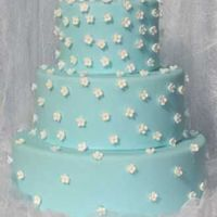 "Spring Blossom Wedding Cake Nearly 200 apple blossoms cover this ""Tiffany Box"" color cake."