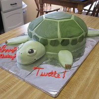 "Turtle Cake made this for special request. birthday girl's nickname is ""turtle"". head, arms, legs all made from fondant. body is cake..."