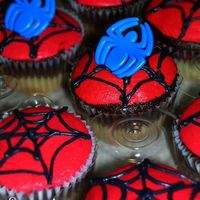 Spiderman Sweetcakes These sweet cakes were done for a little boys birthday. I love the spiderweb! I hope he did to.