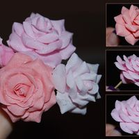 Gumpaste Roses this was my first time trying out gumpaste. it was easier then i thought. i didn't realized until now that the method i used to make...