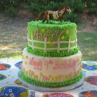 Pony Party Bday Cake This is done in all buttercream (except the horse which was provided by the customer). I had to stick the horses legs far into the cake as...