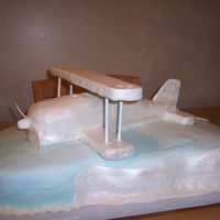 Bi Plane Wedding Cake Bi Plane wedding cake, wings and structure is foamcore covered in fondant, plane body is cake covered in fondant with airbrushed pearl,...