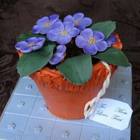 Terra_Cotta_Violet_Cc.jpg This was a last minute cake and a pain in the neck to frost. I baked it in a 4â flower pot with no problems, but my buttercream...