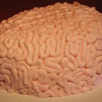 Brain Cake Cake made for my daughters class after they spent most of the year studying the brain.