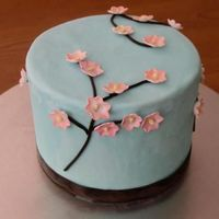 Cherry Blossom  This is a 6 inch cake inspired by a cake from jacquespastries.com The fondant looks a little mottled because there is frost on it. (I froze...