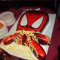 Spidey Spiderman shooting his web.My sons 28th birthday cake.