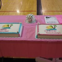 Volleyball League These are the other two sheet cakes with 3D volleyball cake. Sheet cakes are 12X18 - one chocolate, one yellow. Buttercream frosting and...