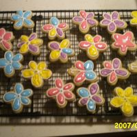 Springy Cookies! NFSC and royal cookie icing...