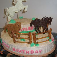 Horse Corral Birthday Cake   Made this for my cousin's 7th birthday - she loves horses! The animals are piped chocolate on bamboo skewers. Lots of fun !!