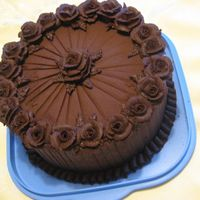Chocolate, Chocolate, Chocolate! Just a simple cake for my hubby and children who LOVE chocolate! My icing consistancy was a bit stiff for my roses, but considering how my...