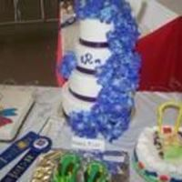 Aaaaaaaaa.jpg Wedding Cake I did for the Local Fair
