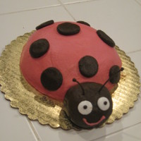 Pink And Brown Ladybug