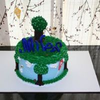 Miles' Cake Made for my nephew - all decorations are gum paste/fondant except for the tree, which is modeling chocolate. Cake is three layers, white...