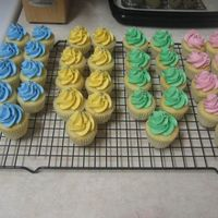 Vanilla Mini Cupcakes french vanilla mini cupcakes with vanilla bc. silver dragees for decoration!