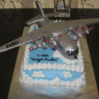 Bomber Jet Cake I guess this is where this goes....made this for a war vet's 70th birthday. The sheet cake is devil's food with vanilla bc and...