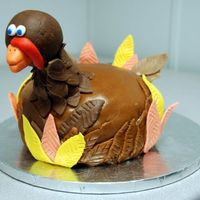 Turkey   Turkey cake for Thanksgiving. Chocolate fondant for the head, rolled buttercream for feathers and back. Marshmallow fondant feathers.