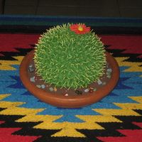 Cactus Cake This cake was modeled after a design by Collette Peters. It is a barrel cactus cake. Margarita Cake (recipe CC) with lime mousse filling,...