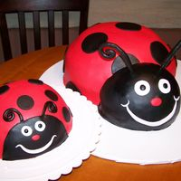 "Lady Bugs Big lady bug is a 2 layer 9"" cake carved into ladybug shape, head is 1/2 of a ball pan turned on its side and then the bottom cut off..."