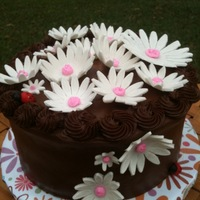 Chocolate Cake With Daisies And Ladybug