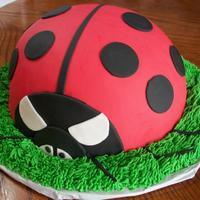 Ladybug Birthday girl loves ladybugs. this is a chocolate cake baked in a stainless bowl and covered in fondant.