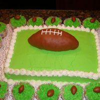 Superbowl Cake This was my attempt at a superbowl cake. We were had to two parties to go to so I made two of the cakes and 48 cupcakes. Since I had so...