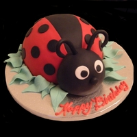 3D Lady Bug All cake covered in Fondant. TFL