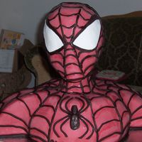 Spiderman Cake fondant cake, chocolate inside and the head is styrofoam covered with fondant. the web is also fondant which i did by hand. the only...