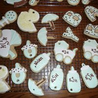 Baby Shower Cookies NFS cookies and Antoniia 74 royal icing The holes where added because we tied them to a branch for the baby shower.