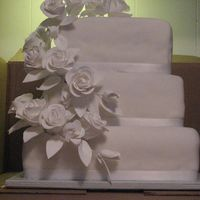 Steph_Wedding1.jpg My VERY first wedding cake.Square cakes covered in fondant.Paper flowers.(Bride supplied)