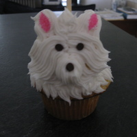 Dog Cupcake Mini cupcake on top of a regular cupcake. All frosting, marshmallow ears.
