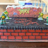 Tmnt I made this cake for my son's 4th birthday. The figures and wall were purchased online at a party supply store. The gravel is black...