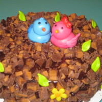 Love Birds  I made this cake for my 7th wedding anniversary. the 2 birds are made out of mmf. the cake is covered in peanut butter cup w/ a choco....