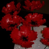 Red Flowers I just finished this flowers 50/50 fondant gumpaste, I'll be using them on a cake next week