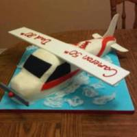 Airplane Dual Birthdays This was for a father and son birthday. It was my first attempt at an airplane cake. I got a lot of inspiration from all the other airplane...