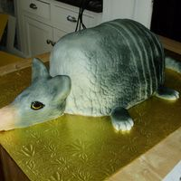Armadillo Cake   This was a red velvet armadillo cake.RKT head and tail.