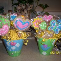 Mothers Day Cookie Bouquet My first one and I love it. My decorating isn't perfect but good enough for me. Thanks to everyone at CC for the inspiration.