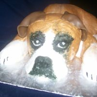 Boxer Puppy   this was a grooms cake decorated all with butter cream except for the ears which are fondant.