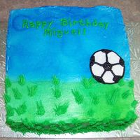 Soccer Field Three layer square cake with buttercream icing. I used the Wilton blue and green spray color for the first time. It wasn't too bad......