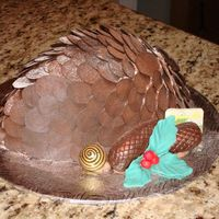 Pine Cone Cake I baked a half egg cake . then with melted chocolate i made all of the pines with a spatula on parchement paper. I stuck all of the...